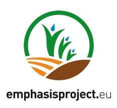 emphasis logo